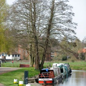Narrow Boats moored at Godalming Wharf with trees behind and a glimpse of the Lammas Lands