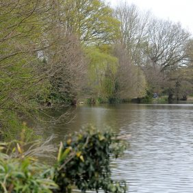 Broadwater Lake, Godalming Photo courtesy of Darren Pepe 2016