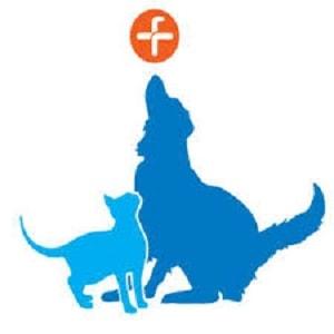 Logo - Fitzpatrick Referrals