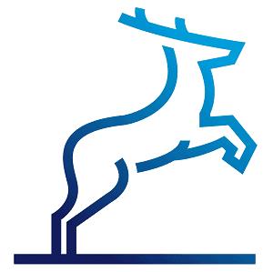 Logo - Blue Deer Design