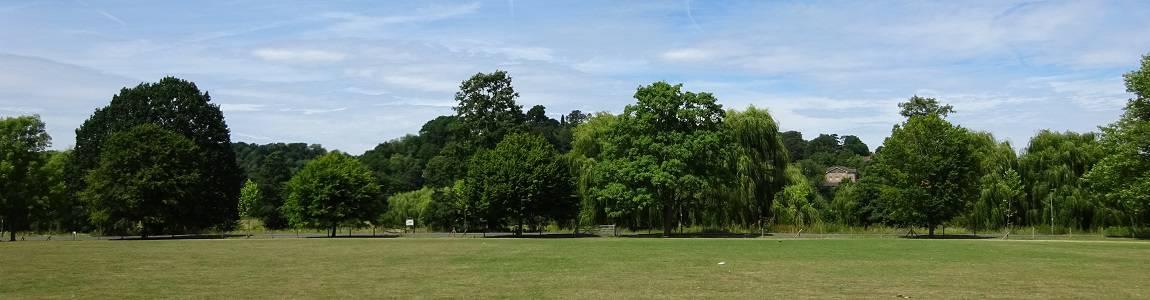 View across The Burys towards the river, Godalming