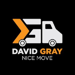 David Gray Nice Move