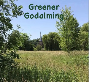 Greener Godalming