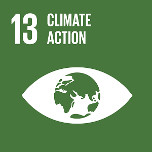 United Nations - Climate Action